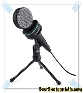 Bidirectional Microphone