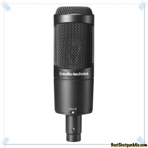 Multi pattern microphone